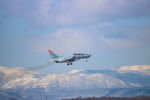 yuka-blueさんが、千歳基地 - Chitose Airbase [RJCJ]で撮影した航空自衛隊 T-4の航空フォト(写真)