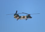 yuka-blueさんが、千歳基地で撮影した航空自衛隊 CH-47J/LRの航空フォト(写真)