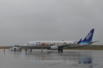Take51さんが、新石垣空港で撮影した全日空 737-881の航空フォト(写真)