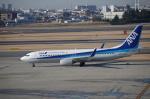 YWさんが、伊丹空港で撮影した全日空 737-881の航空フォト(写真)