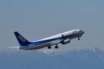 ミッキー2016さんが、中部国際空港で撮影した全日空 737-881の航空フォト(写真)