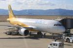 職業旅人さんが、関西国際空港で撮影したバニラエア A320-214の航空フォト(写真)