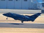 Mame @ TYOさんが、名古屋飛行場で撮影した航空自衛隊 U-125A(Hawker 800)の航空フォト(写真)