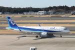 職業旅人さんが、成田国際空港で撮影した全日空 A320-271Nの航空フォト(写真)