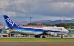 Airway-japanさんが、函館空港で撮影した全日空 747-481(D)の航空フォト(写真)