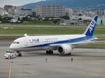 flyflygoさんが、伊丹空港で撮影した全日空 787-881の航空フォト(写真)