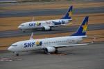 さくらの城南山。さんが、羽田空港で撮影したスカイマーク 737-81Dの航空フォト(写真)