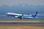 Mochi7D2さんが、羽田空港で撮影した全日空 737-881の航空フォト(写真)
