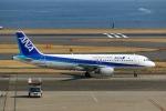 Mochi7D2さんが、羽田空港で撮影した全日空 A320-211の航空フォト(写真)