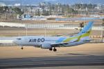 fortnumさんが、仙台空港で撮影したAIR DO 737-781の航空フォト(写真)