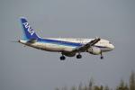 熊五郎~さんが、成田国際空港で撮影した全日空 A320-211の航空フォト(写真)