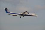熊五郎~さんが、成田国際空港で撮影したANAウイングス DHC-8-402Q Dash 8の航空フォト(写真)