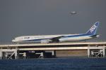 チェリーさんが、羽田空港で撮影した全日空 777-381/ERの航空フォト(写真)