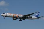 天空の鷲さんが、成田国際空港で撮影した全日空 777-381/ERの航空フォト(写真)