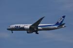 ぬま_FJHさんが、羽田空港で撮影した全日空 787-881の航空フォト(写真)