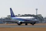 うさぎぱぱさんが、鹿児島空港で撮影したANAウイングス 737-54Kの航空フォト(写真)