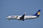 ぬま_FJHさんが、羽田空港で撮影したスカイマーク 737-8Q8の航空フォト(写真)