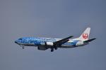 ぬま_FJHさんが、羽田空港で撮影した日本トランスオーシャン航空 737-4Q3の航空フォト(写真)