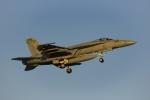 Mochi7D2さんが、厚木飛行場で撮影したアメリカ海軍 F/A-18E Super Hornetの航空フォト(写真)