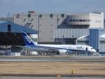 世界への青い翼(KIX-TSA)さんが、伊丹空港で撮影した全日空 787-881の航空フォト(写真)