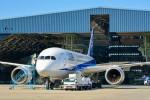 車掌さんが、伊丹空港で撮影した全日空 787-881の航空フォト(写真)
