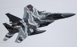 VIPERさんが、茨城空港で撮影した航空自衛隊 F-15DJ Eagleの航空フォト(写真)