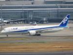 JA7NPさんが、羽田空港で撮影した全日空 787-9の航空フォト(写真)