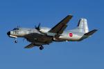 Mamoruuuuさんが、厚木飛行場で撮影した航空自衛隊 YS-11A-402EAの航空フォト(写真)