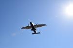 Saeqeh172さんが、調布飛行場で撮影した新中央航空 228-212の航空フォト(写真)