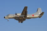 350JMさんが、厚木飛行場で撮影した航空自衛隊 YS-11A-402EAの航空フォト(写真)