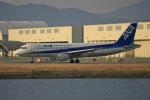 tsubameさんが、岩国空港で撮影した全日空 A320-211の航空フォト(写真)