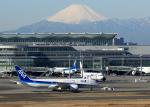 tuckerさんが、羽田空港で撮影した全日空 787-881の航空フォト(写真)