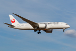 GOOSEMAN777さんが、成田国際空港で撮影した日本航空 787-846の航空フォト(写真)