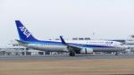 Koj-skadb1621_2116さんが、鹿児島空港で撮影した全日空 737-881の航空フォト(写真)