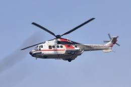 sonnyさんが、成田国際空港で撮影した朝日航洋 AS332L Super Pumaの航空フォト(写真)