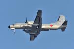 NFファンさんが、厚木飛行場で撮影した航空自衛隊 YS-11A-402Eの航空フォト(写真)