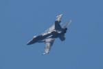 ほーねっともきさんが、厚木飛行場で撮影したアメリカ海軍 F/A-18F Super Hornetの航空フォト(写真)