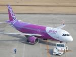 enrouteさんが、仙台空港で撮影したピーチ A320-214の航空フォト(写真)