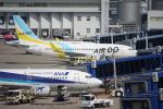 きったんさんが、中部国際空港で撮影したAIR DO 737-781の航空フォト(写真)