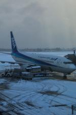 takaRJNSさんが、函館空港で撮影した全日空 737-881の航空フォト(写真)