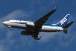 木人さんが、成田国際空港で撮影した全日空 737-781の航空フォト(写真)