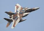 new_2106さんが、茨城空港で撮影した航空自衛隊 F-15DJ Eagleの航空フォト(写真)