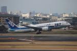 uhfxさんが、伊丹空港で撮影した全日空 787-881の航空フォト(写真)