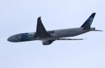 MOHICANさんが、関西国際空港で撮影したエジプト航空 777-36N/ERの航空フォト(写真)