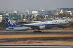 uhfxさんが、伊丹空港で撮影した全日空 777-281/ERの航空フォト(写真)