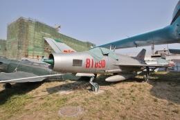 青島海軍博物館で撮影された青島海軍博物館の航空機写真