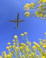 TopGunさんが、福岡空港で撮影したANAウイングス DHC-8-402Q Dash 8の航空フォト(写真)