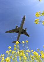 TopGunさんが、福岡空港で撮影した全日空 767-381/ERの航空フォト(写真)