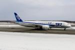 北の熊さんが、新千歳空港で撮影した全日空 787-881の航空フォト(写真)