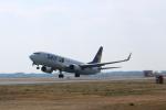 poppoya-makochanさんが、茨城空港で撮影したスカイマーク 737-81Dの航空フォト(写真)
